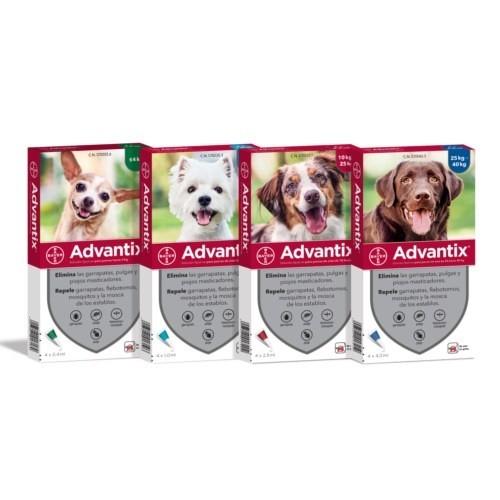 Pipeta Advantix Perros Pack 4ud