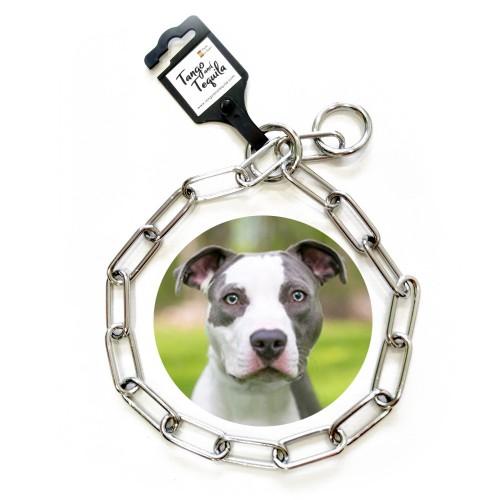 Collar metálico perro adiestramiento eslabón largo