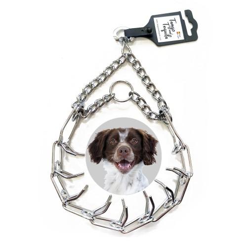 Collar metálico perro adiestramiento con púas