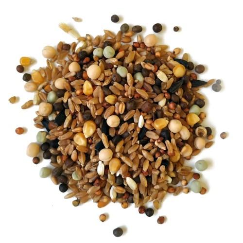 Alimento para aves de compañía Sunseed 3 Kg