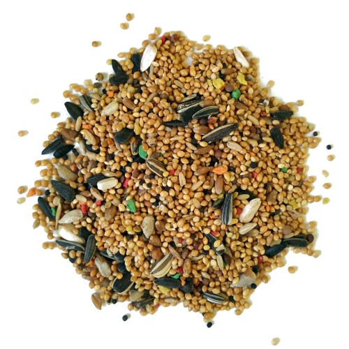 Alimento para ninfas y agapornis Sunseed 3 Kg