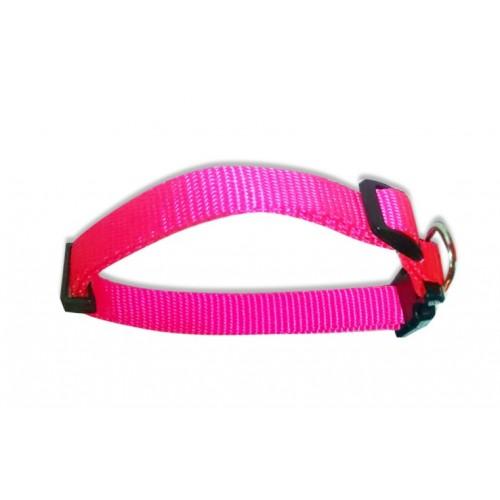 Collar para Perros Pequeños y Gatos Nylon 1,5cm x 40cm Colores