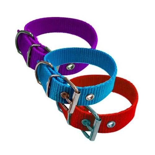 Collar para Perros Nylon 2,5cm Colores