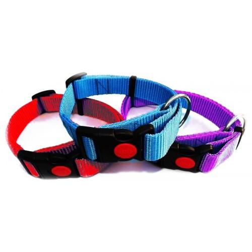 Collar para Perros Regulable Colores con Cierre