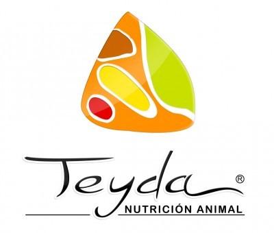 Teyda